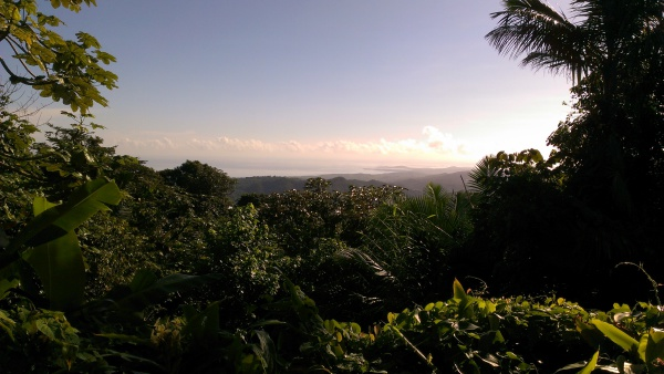View at El Yunque National Forest - Puerto Rico