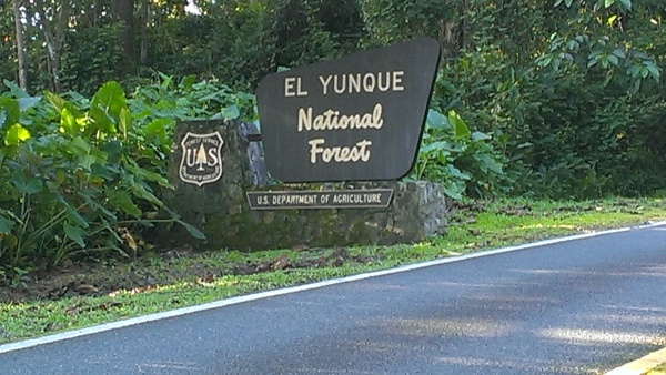 El Yunque National Forest Entrance